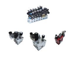 Manifold with Valves Series